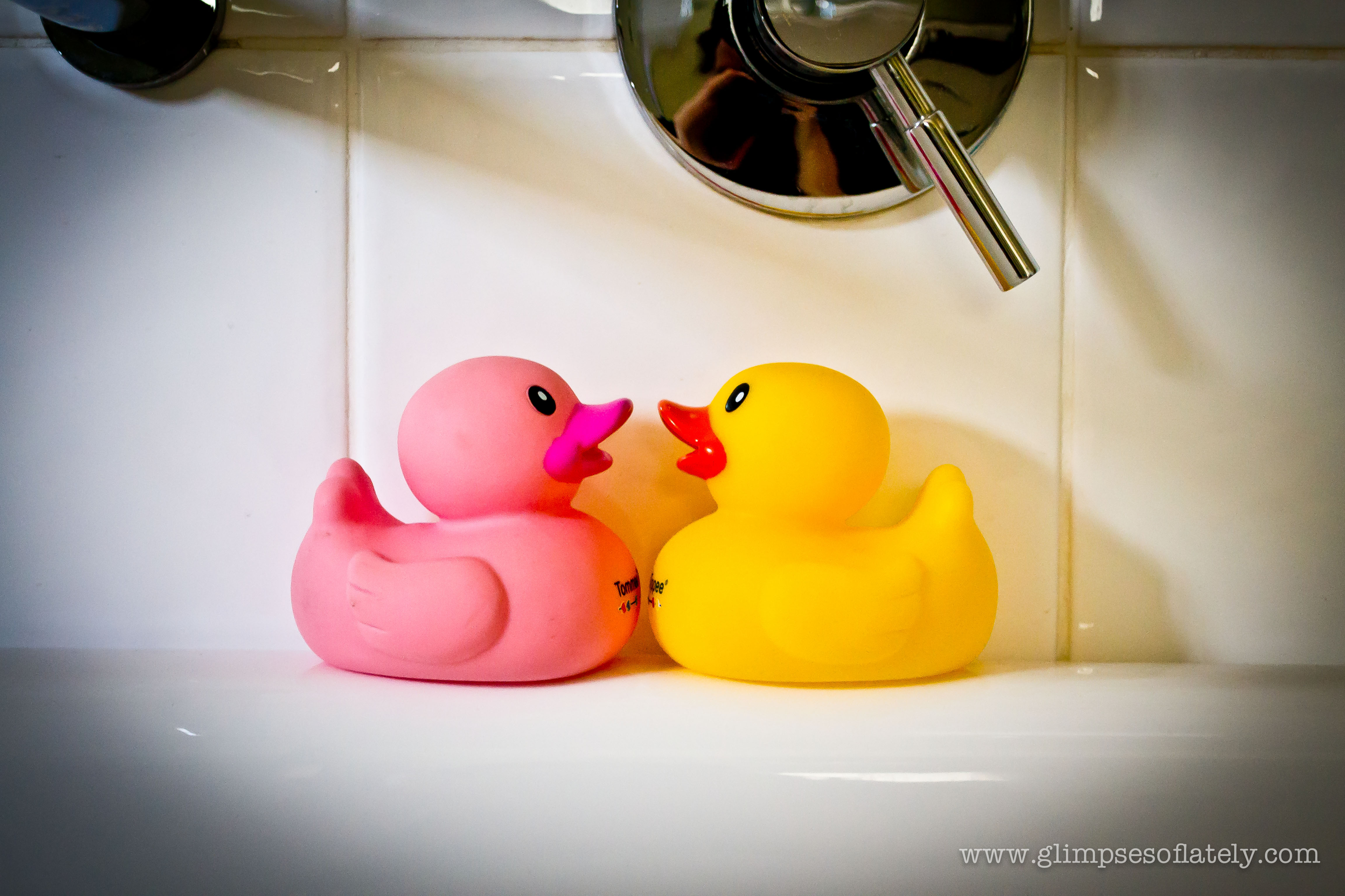 Rubber Ducks-0094