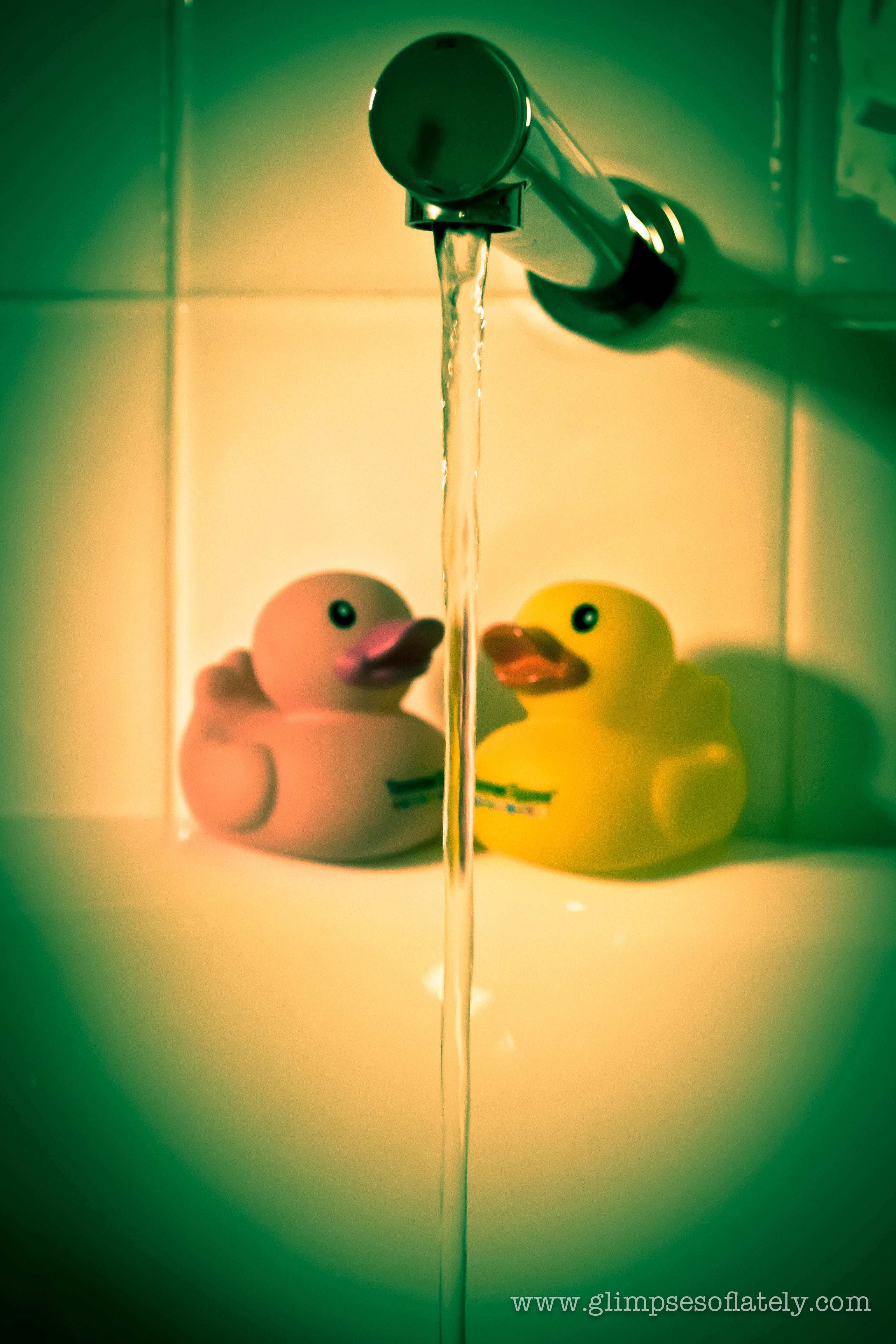 Rubber Ducks-0110